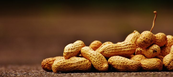 peanut allergy awareness - food allergy bullying - invisibly allergic blog